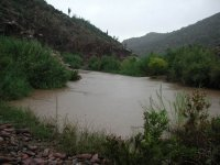 Lower Tonto Creek