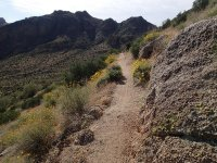 Pass Mountain Trail (Usery Mountain park)