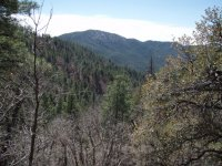 Groom Creek Loop