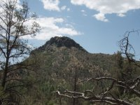 Pine Lakes Trail #316