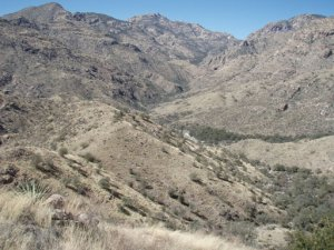 Sabino Canyon to Bear Canyon loop