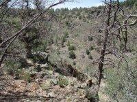 Gaddes Canyon Trail #9037 (Upper)