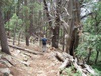 Donahue Trail