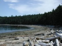 Sand Point (Olympic National Park)