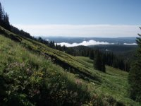 Mount Washburn (Yellowstone National Park)