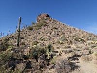 Brown's Mountain (McDowell Sonoran Preserve)