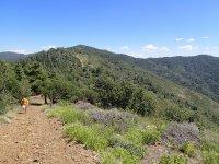 Mount Tritle