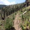 Hiking on the Little Bear trail