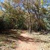 Fall colors along the Templeton trail