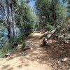 Along the Lynx lake trail