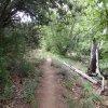 Bull Pen Ranch trail