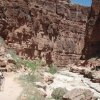 Hiking in Havasupai canyon