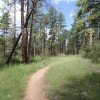 Hiking the Feldmeier trail