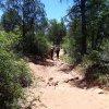 Along the Fay Canyon trail