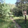 Start of the Babe Haught trail