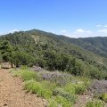 Hiking the ridgeline of Mount Tritle