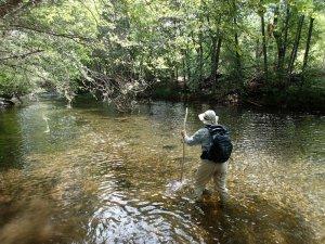 Crossing West Clear Creek along the Bull Pen ranch trail