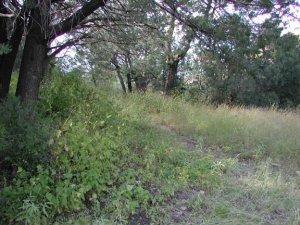 Powers garden trail