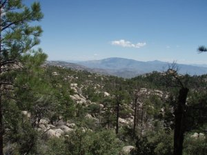 Views from the Mount Lemmon trail