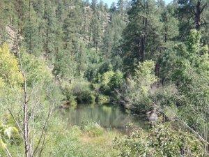 Telephone Ridge trail