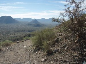 San Tan Regional park - out and back hike to the graves
