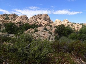 Rock formations seen from the Constellation trail system