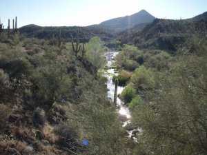 Cave creek as seen from the Metate - Spur cross loop hike