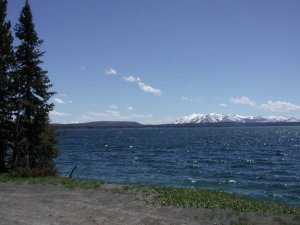 Shoshone lake - Yellowstone national park