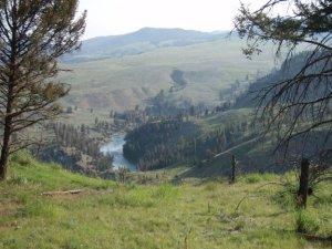 Black canyon of the Yellowstone