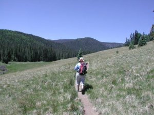 Hiker on the Mount Baldy trail