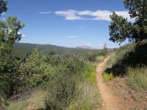 Hiking along the Salida view trail