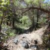 Hiking along the Turley trail