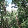 Mingus mountain loop hiking trail