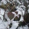 Snowy desert on the White rock loop trail