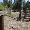 Heading through the fence