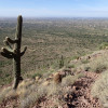 Lone Saguaro looks over the Superstition Wilderness