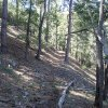 Along the Kellner canyon trail