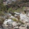 Bear canyon trail