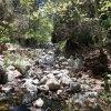 Haunted Canyon trail (Tony Ranch)