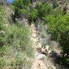 Hiking the Algonquin trail