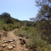 Badger Mountain trail