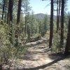 Goldwater lake trail