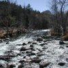 Oak Creek near the casner canyon trail