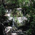 Grapevine Creek