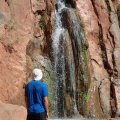 Admiring Stone Creek in the Grand Canyon