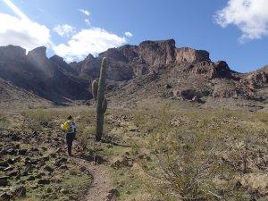 Hiking on the Saddle mountain trail