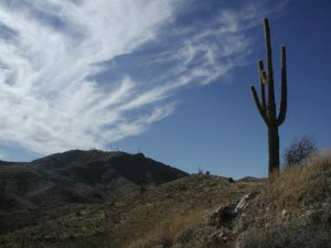 Mesquite canyon-Willow canyon trail loop (White tank regional park)