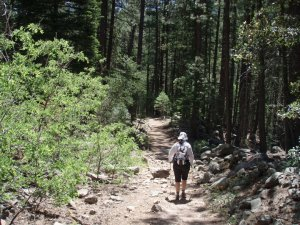 on the trail to Horton springs