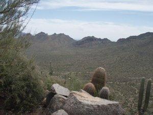 EJ peak trail