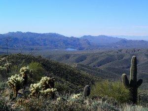 Saguaro lake as seen from Cane springs road